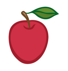 apple isolated object vector image