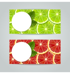 banners with citrus fruits vector image