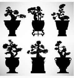 Bonsai tree plant flower pot a set of bonsai tree vector