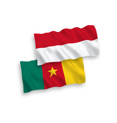 Flags of indonesia and cameroon on a white vector
