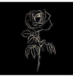 Golden Rose sketch vector image vector image