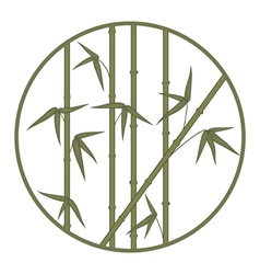bamboo in circle vector image