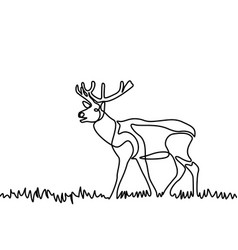 Continuous line elk standing in grass or vector