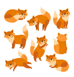 fox characters cute cartoon red foxes funny vector image