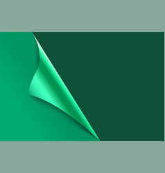 sheet of curled green paper background vector image