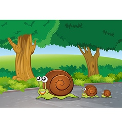 Snails at road vector