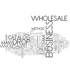 wholesale and drop shipper work together text vector image