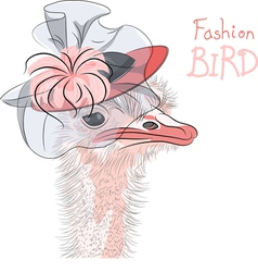 fashion Ostrich Bird vector image vector image