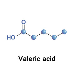 valeric acid or pentanoic acid vector image