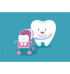 Baby tooth and mom tooth vector image