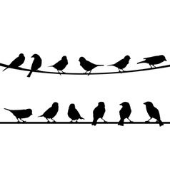 Birds on string vector