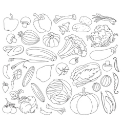 Doodle set vegetables vector