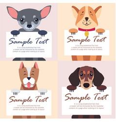 Four purebred dogs holds white cards for text vector