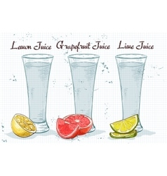 Glasses of juices on a notebook page vector image