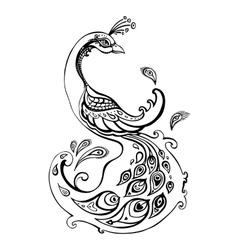 Peacock Decorative vector