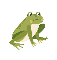 Sad frog sitting with unhappy face funny vector