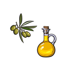 sketch olive oil logo icon isolated vector image