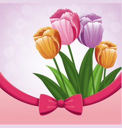 beauty tulips flower ribbon bow decorate vector image vector image
