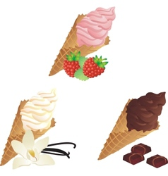 Different sorts of Ice Cream vector image vector image