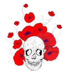 Skull and poppies vector