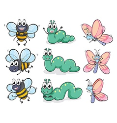 A caterpillar butterfly and bee vector