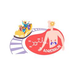 Adrenaline hormone flat composition vector