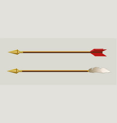 Arrows with bird feather and golden tip set vector