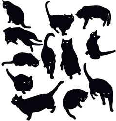 Black cats silhouette vector