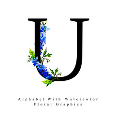 letter u watercolor floral background vector image