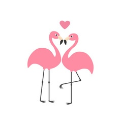 Pink flamingo couple and heart Exotic tropical vector image