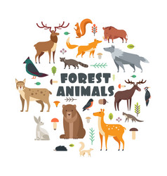 Wild forest animals and birds arranged in circle vector