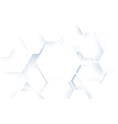 abstract white hexagons geometric shape background vector image vector image