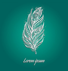 white feather vector image