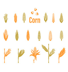 Corn icons agriculture logo template vector