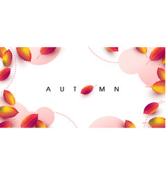 Autumn background layout decorate with leaves vector