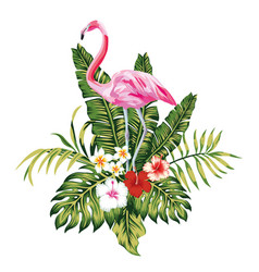 composition pink flamingo tropical leaves and vector image