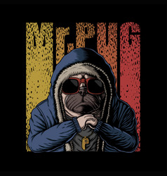 mr pug dog vector image