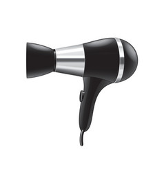 hair dryer isolated vector image
