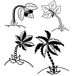 Palm trees collection vector image vector image