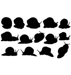 snail set vector image vector image