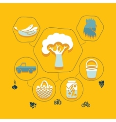 agriculture flat infographic vector image