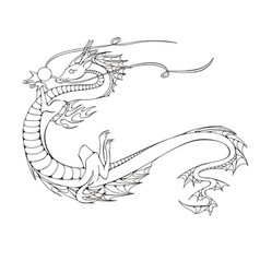 Asian dragon symbol of the 2024 year vector