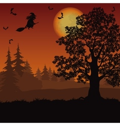 Halloween landscape with witch and trees vector image