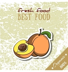 Healthy Food Peach vector image