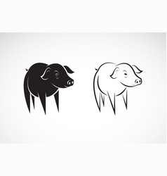 little pig design on a white background farm vector image