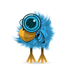 stock blue bird with magnifier vector image