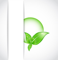green leaves with bubble vector image vector image