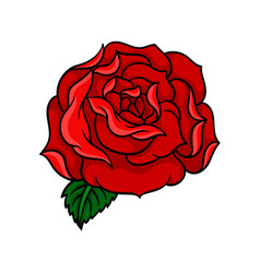 bud of rose with bright red petals and one green vector image