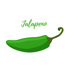 cartoon jalapeno hot green chilli pepper vector image