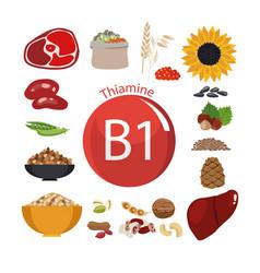 Vitamin b1 thiamine vector